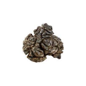Dohse Hobby ukras za akvarij Pagoda Rock S, 0,4 - 1,0 kg