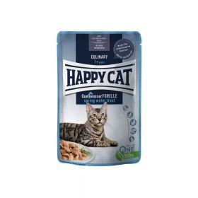 Happy Cat Culinary pastrva u umaku 85 g vrećica