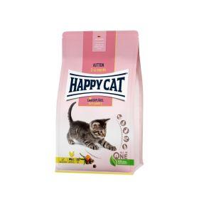 Happy Cat Kitten perad