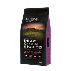 Profine Energy piletina
