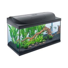 Tetra akvarij Starter Line LED crni 105 l