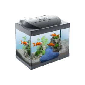 Tetra akvarij Starter Line LED za zlatne ribice crni 30 l