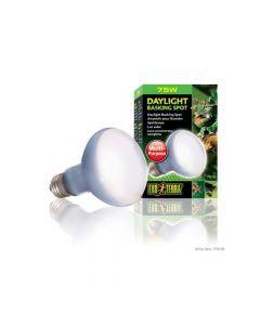 Hagen Exo Terra Sun Glo daylight Basking Lamp 75 W