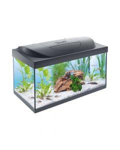 Tetra akvarij Starter Line LED crni 54 l
